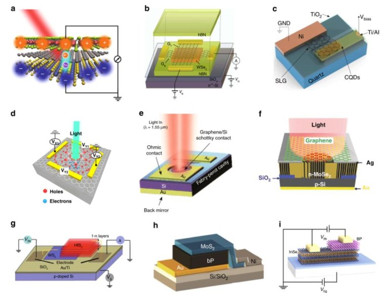 Surface-illuminated Si2DM PDs with heterostructure configurations