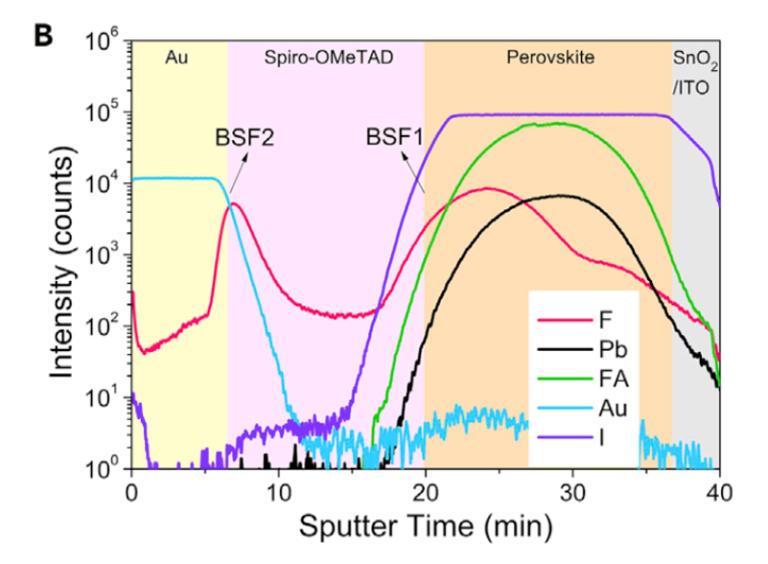飞行时间二次离子质谱 (ToF-SIMS) 被用来探测器件中F原子的分布