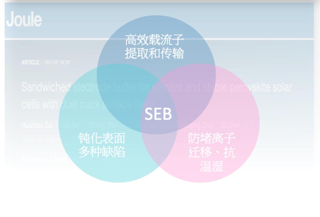 BSF SEB 10种表徵技术探讨BSF在钙钛矿电池的功效